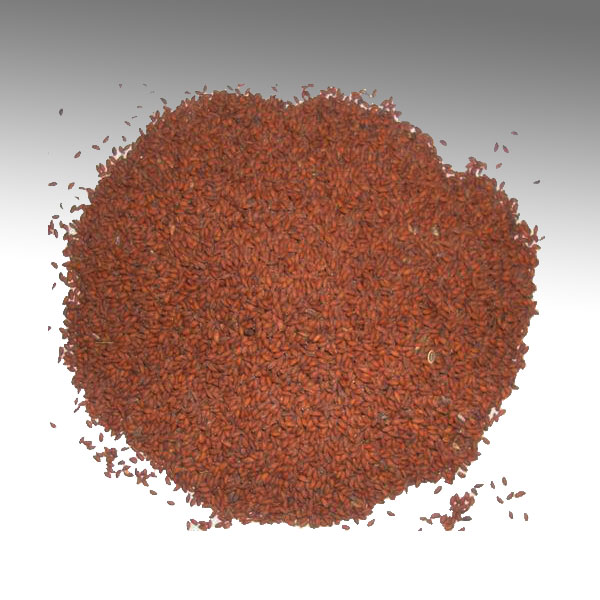 Buy From: Buy Online Taramira Seeds