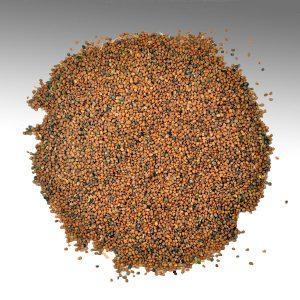 Organic Taramira Seeds